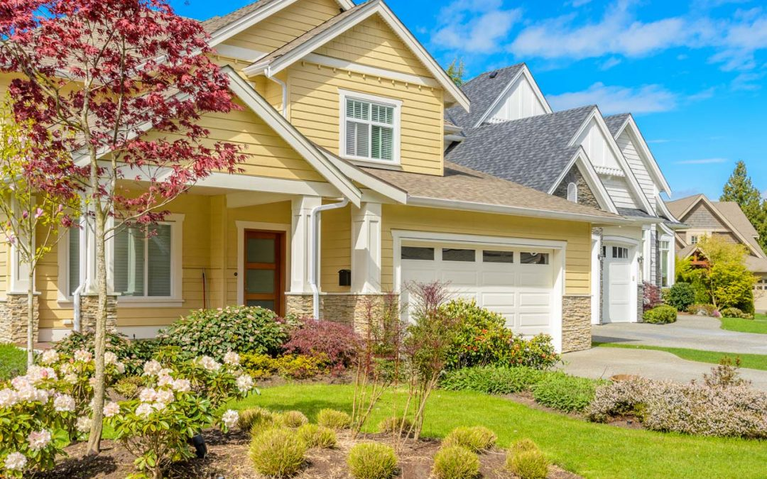 Landscaping for the health of your home Part I
