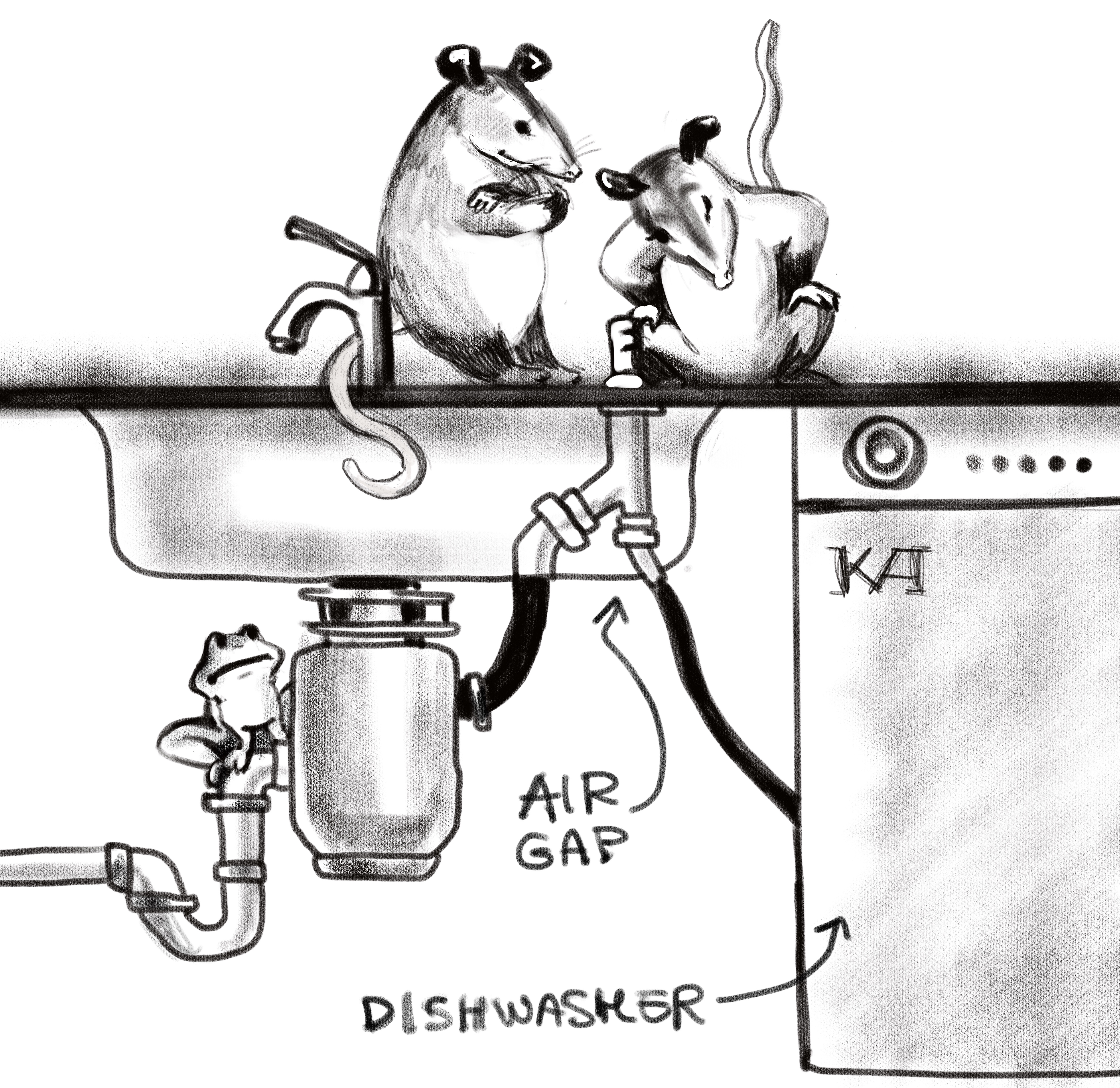 Dishwasher Contamination Part Ii The Air Gap Spot On Inspection Home Inspector