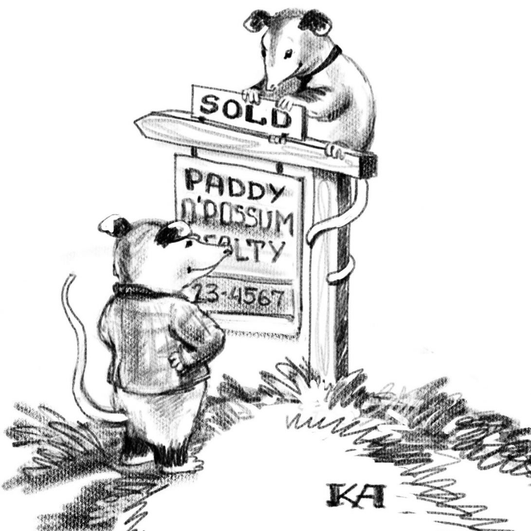 paddy opossum sold sign