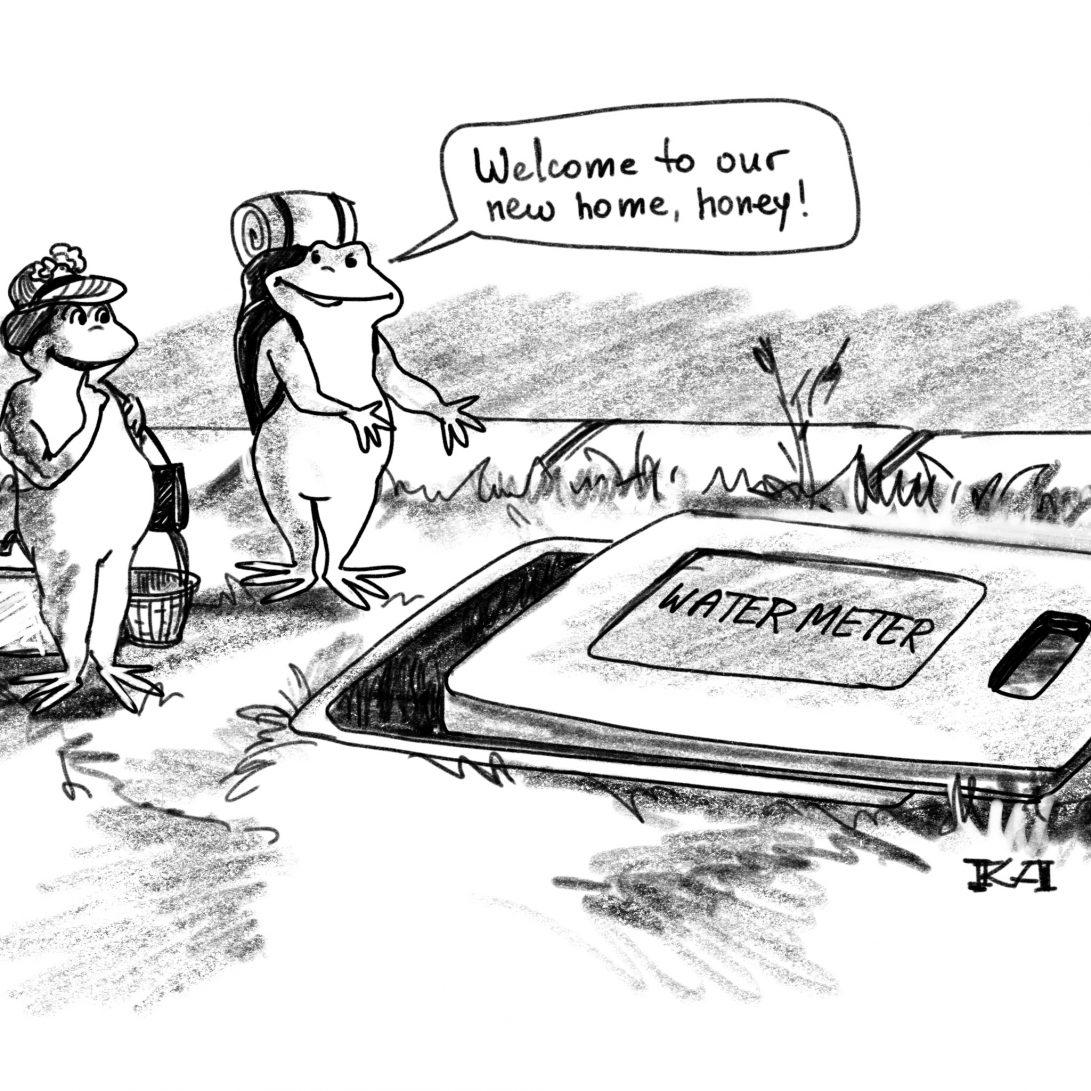 Your Water Meter