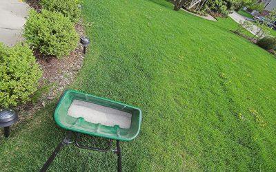 Lawn Fertilizer Schedule Interval 1