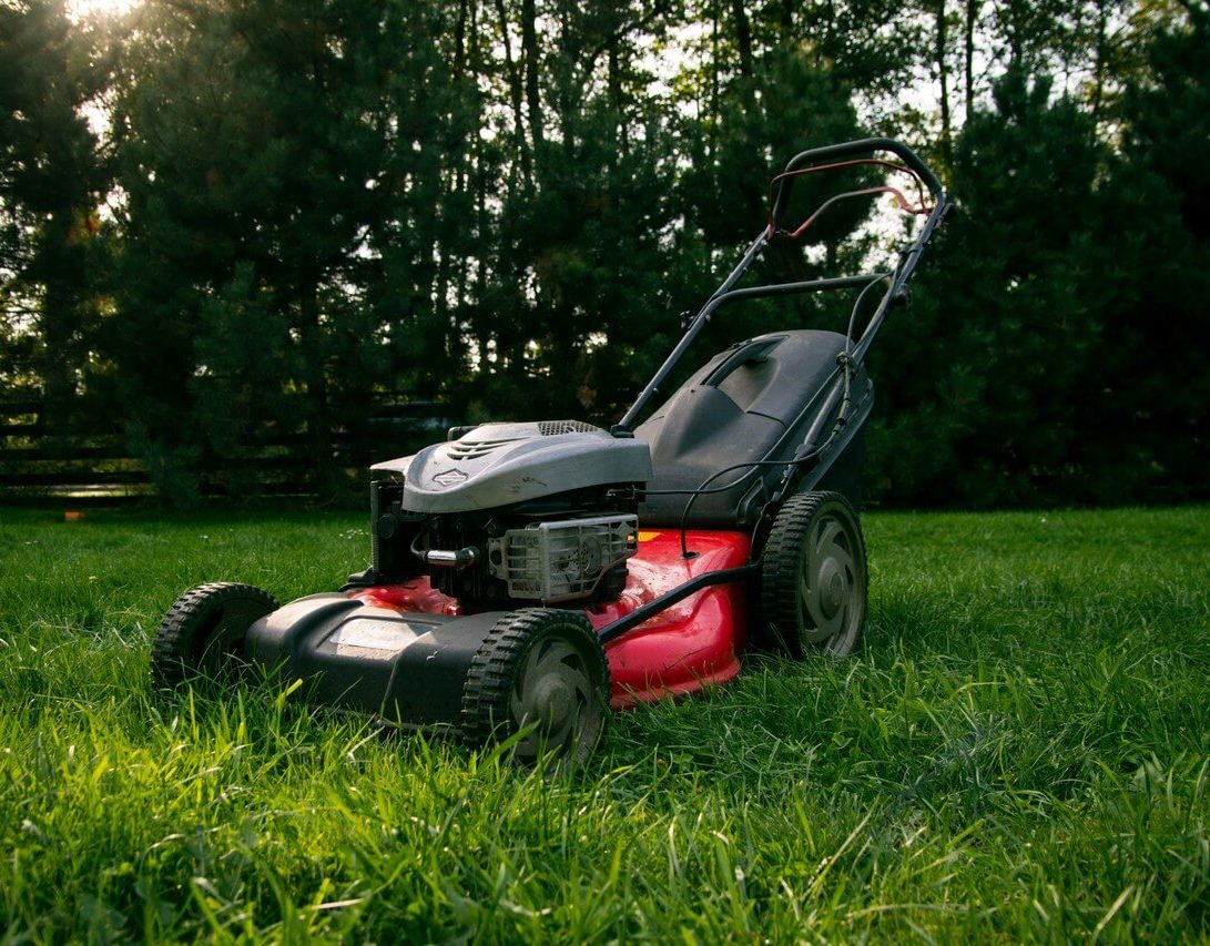 Lawn Maintenance Tips for Spring and Summer