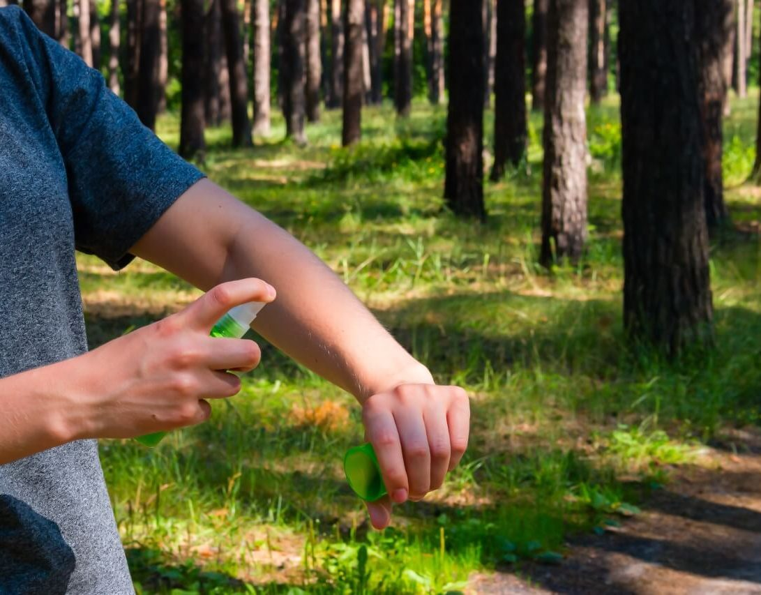 keep mosquitoes off your property with natural repellants