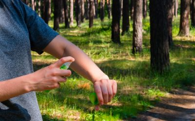 4 Ways to Keep Mosquitoes Off Your Property